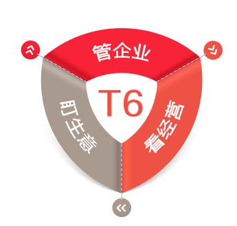 用友 T6 软件